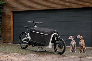 Cargo-Fahrrad kaufen