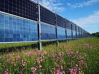 Energiegenossenschaften: Investieren lohnt sich